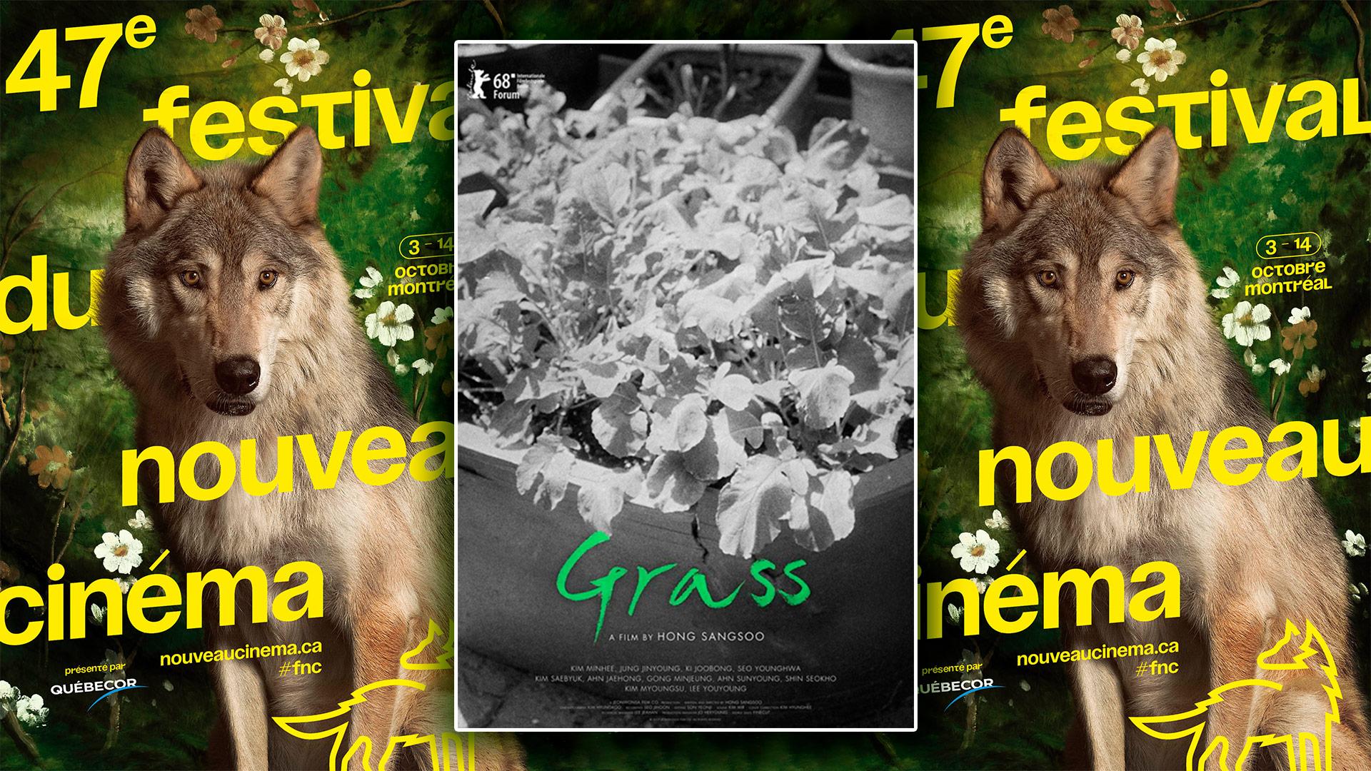 [FNC 2018] Critique du film Grass